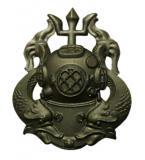 Odznak US DIVER Master ÈERNÝ