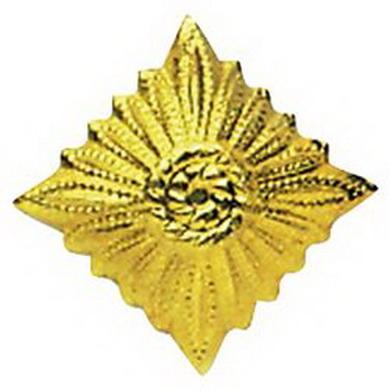 Odznak hodnostní NVA hvìzda