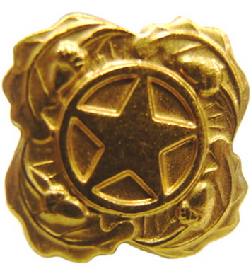 Odznak US HVÌZDA