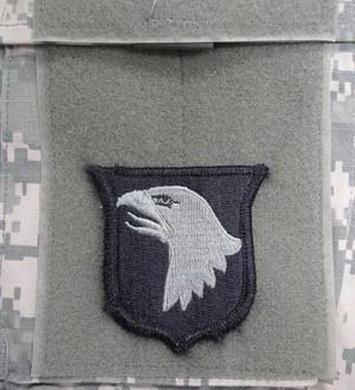Nášivka 101st AIRBORNE DIVISION VELCRO - FOLIAGE