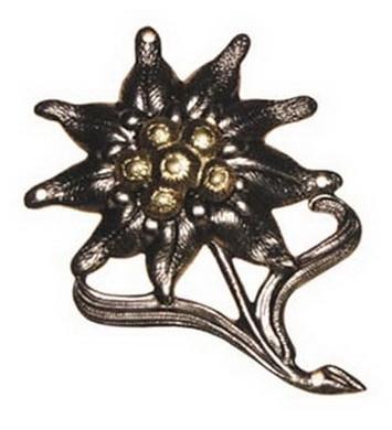 Odznak BW ALPSKÁ PROTÌŽ kovový STØÍBRNÝ