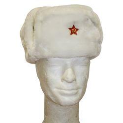 armáda Ruská Beranice ruská se znakem